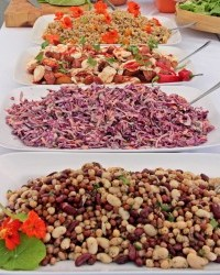 Wedding Catering in Cornwall